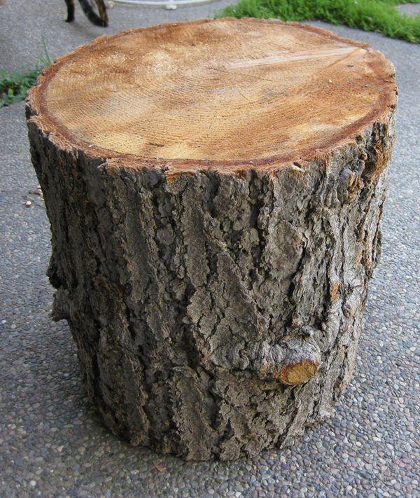 Diy Tree Stump Table K Sarah Designs