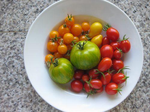 Tasty Eats // Caprese Lentil Summer Salad - K Sarah Designs