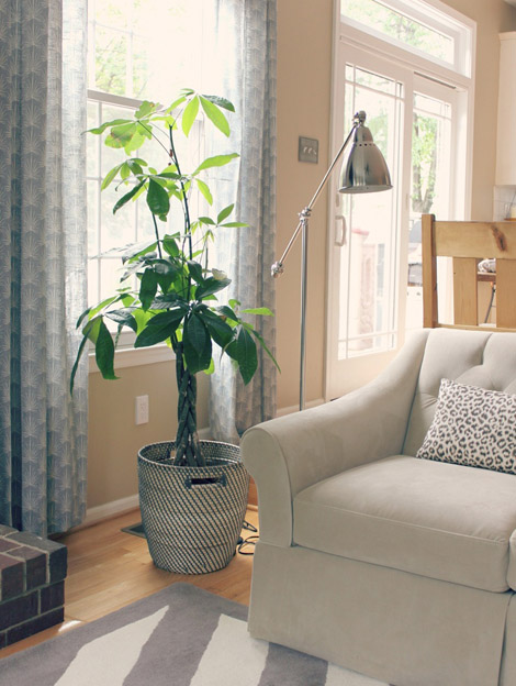 in living rooms baskets are great for storing extra pillows and throw blankets but can also be used as a catch all coffee table tray and as a plant holder catch office space organized